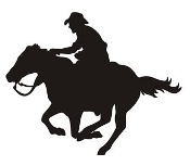 175x153 Cowboy Western Rodeo Cowgirl Decals Stickers