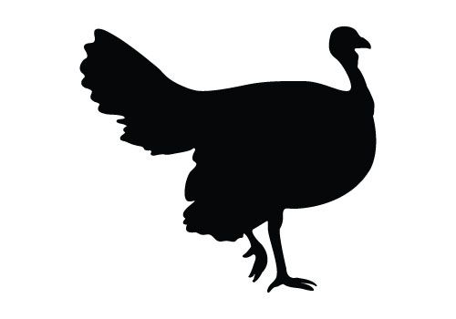 500x350 Silhouette Turkey Silhouette Vectors For Your Thanksgiving Day