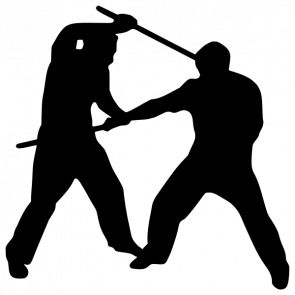 295x295 35 Best Martial Arts Sayings Amp Insperation Images
