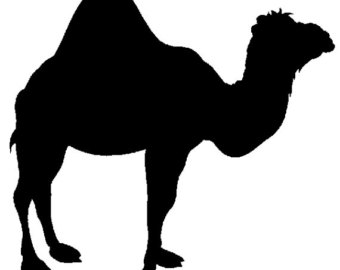 340x270 Camel Clipart Silhouette Many Interesting Cliparts