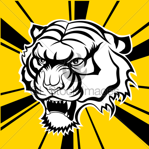 500x500 Tiger Face Vector Silhouette Gl Stock Images