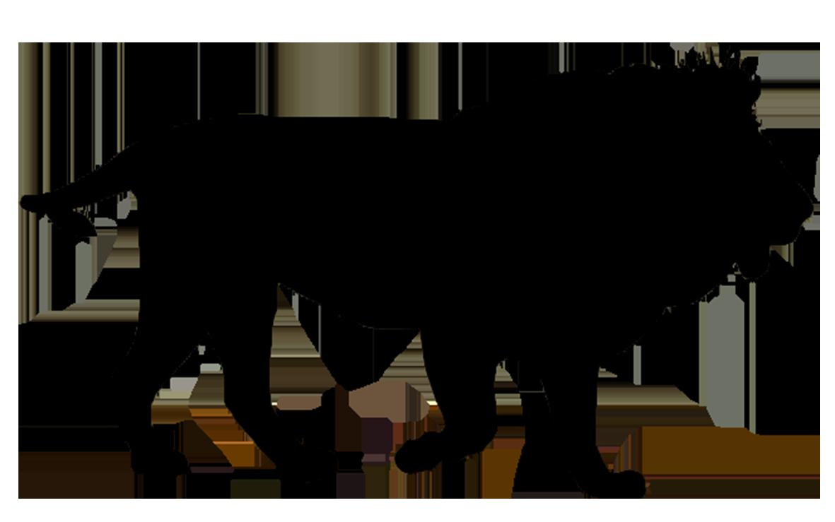 1181x739 Tiger Clipart Shadow