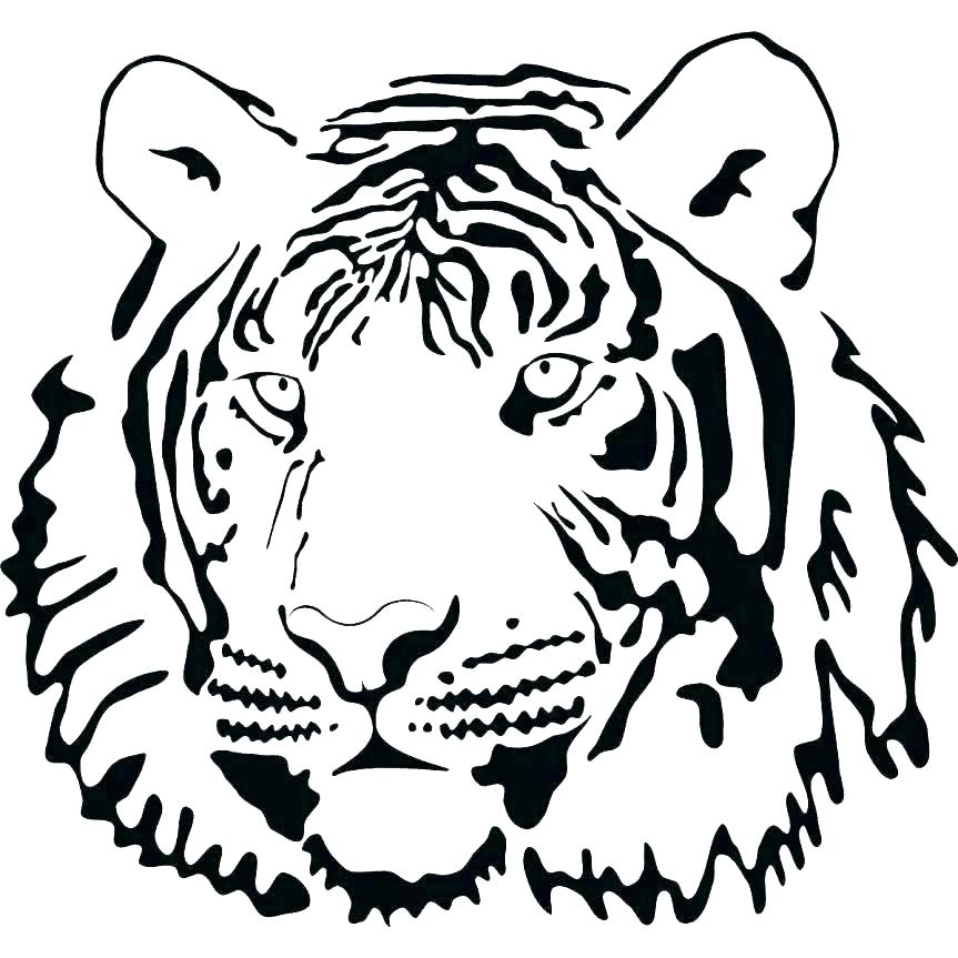 863x863 Outlines Animal And Tattoo By Animal Outline Tiger Face Outline