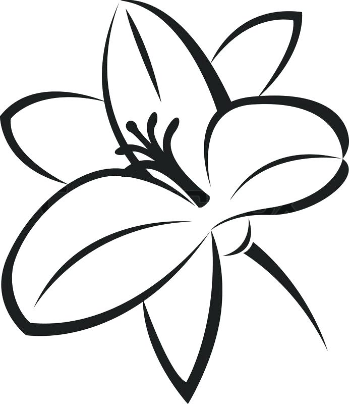 692x800 Outline Of Flowers Pictures And Frames Cartoon Flower Outline