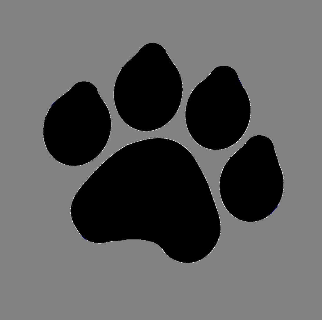 1095x1088 Tiger Paw Drawing Dog Clip Art