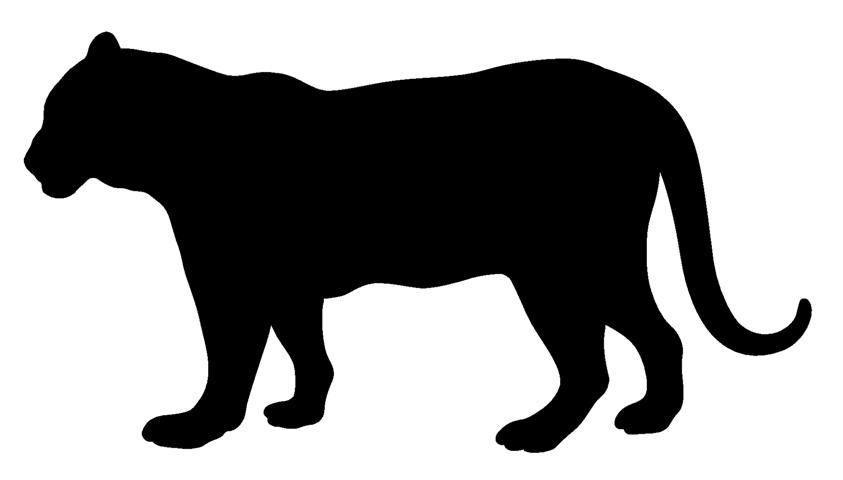 843x480 Tiger Silhouette 3 Decal Sticker