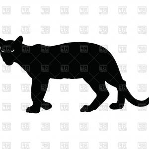 300x300 Tiger And Panther Wild Animal Silhouette Vector Createmepink