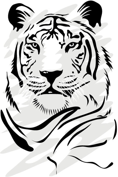 400x600 Angry Tiger Free Vector Download (473 Free Vector) For Commercial