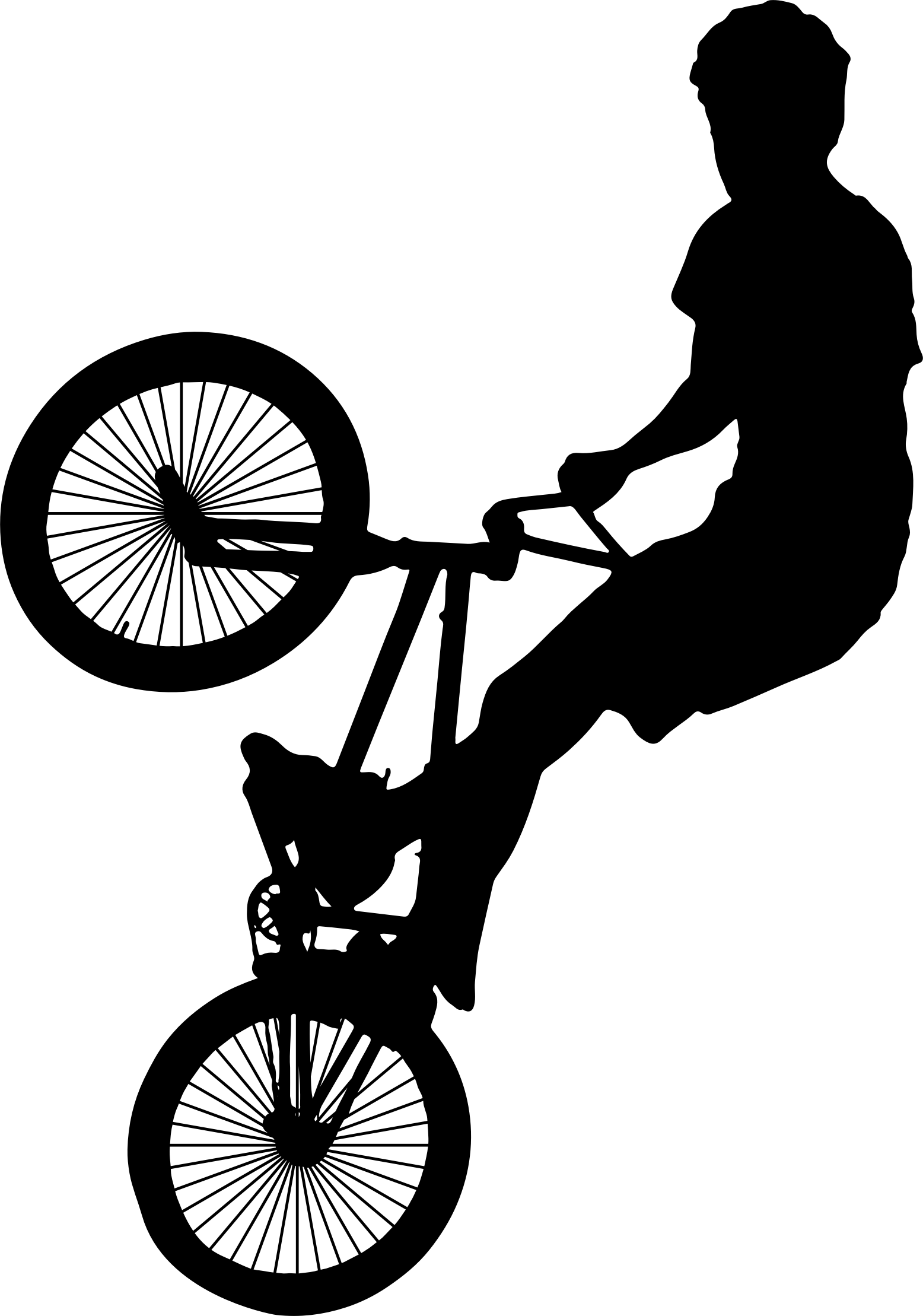 1556x2218 Clipart