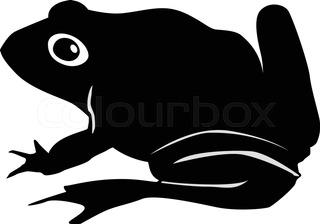 320x224 Funny Toad Cartoon Stock Vector Colourbox