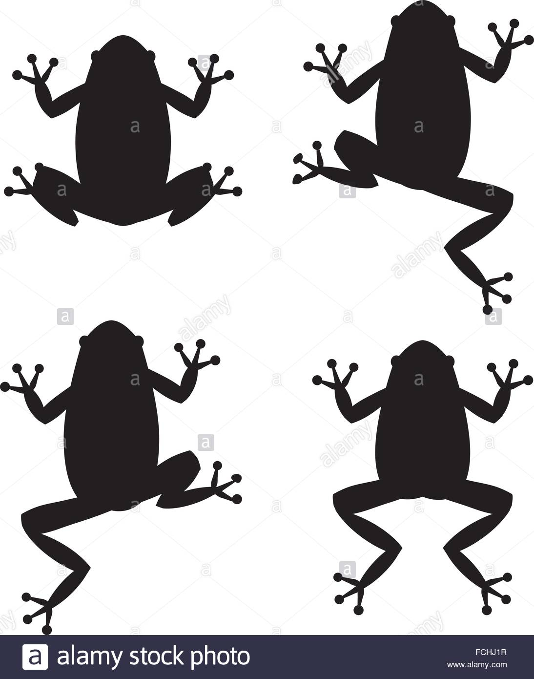 1094x1390 Set Of Frog Silhouettes On White Background, Vector Stock Vector