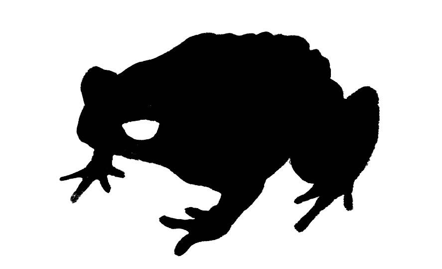 887x539 Toad Clipart Clipart Panda
