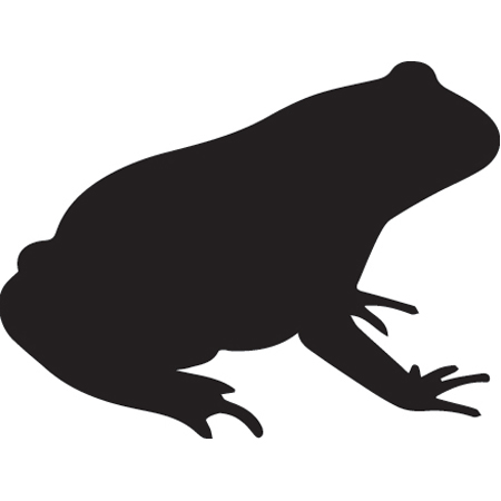 450x450 Frog.jpg