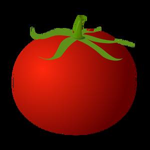 Tomato Plant Silhouette