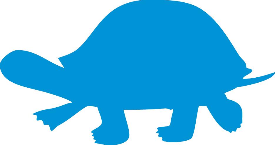 Tortoise Silhouette