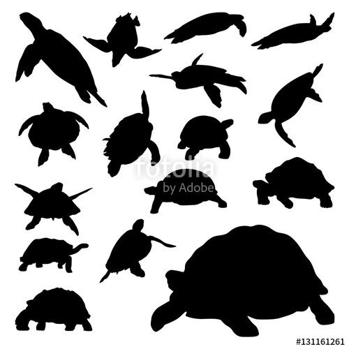 500x500 Turtle Tortoise Terrapin Walk Crawl Swim Vector Silhouette