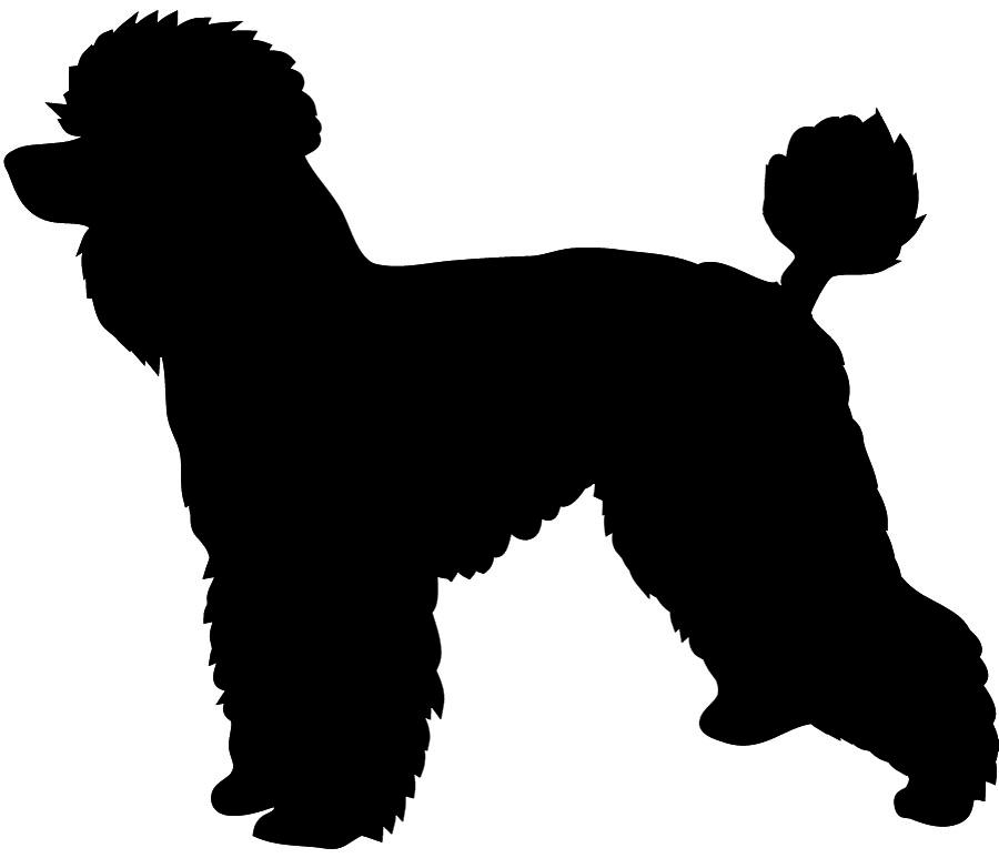 900x773 Silhouette Clipart Poodle