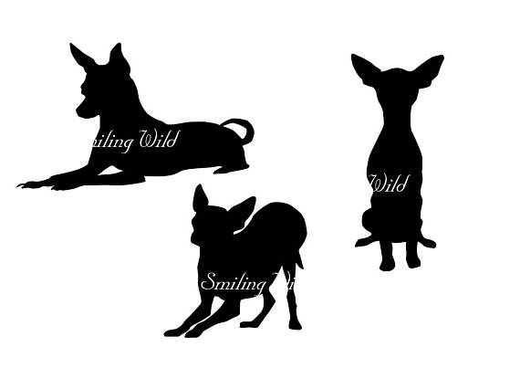 570x403 Toy Terrier Svg Silhouette Russian Toy Terrier Clipart Dog