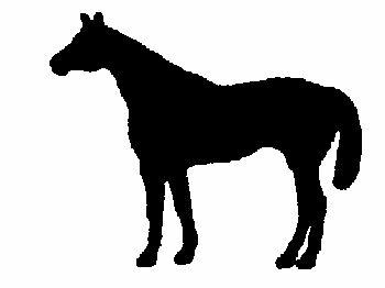 350x262 Quarter Horse Self Adhesive Truck Or Trailer Silhouette Sticker
