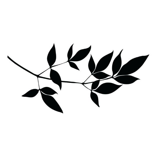 540x540 Branch Silhouette Tree Branch Silhouette Png