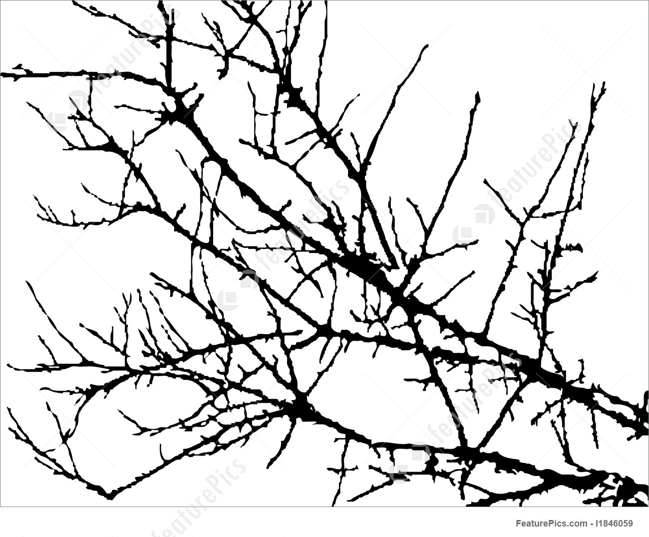 1300x1076 Illustration Of Silhouette Of Branches Of Tree