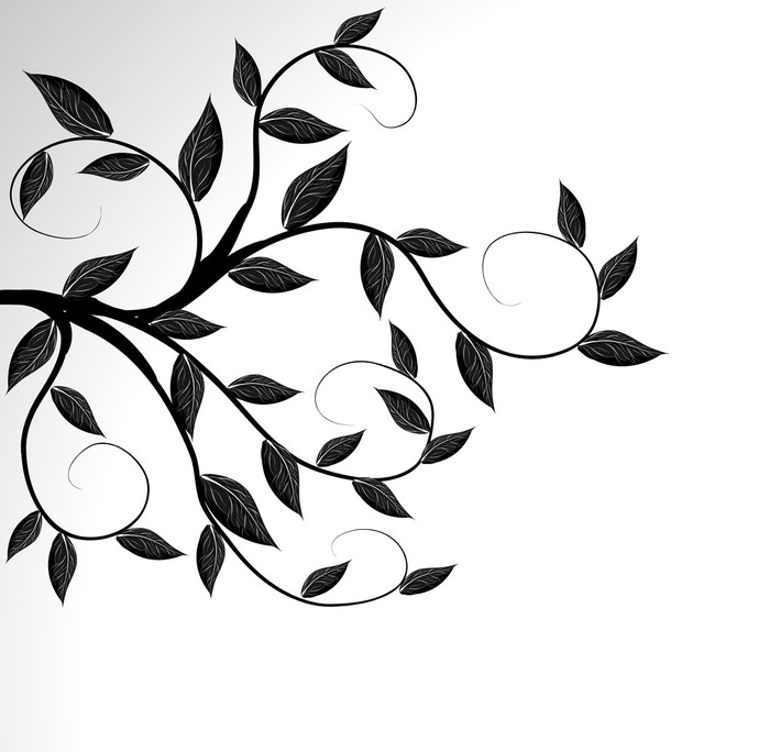700x684 Vector Of A Tree Branch Silhouette Wall Mural We Live