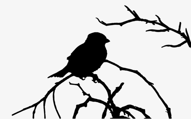 650x404 Bird Tree, Branches, Birds, Vector Png Image And Clipart For Free