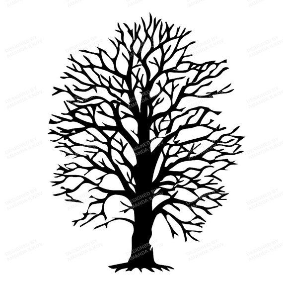 570x569 Professional Tree Branches Clip Art Tree Silhouette Clip Art