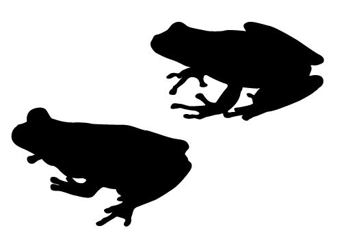 500x350 Free Frog Silhouettes Vector Illustration Ampfrog Clipart