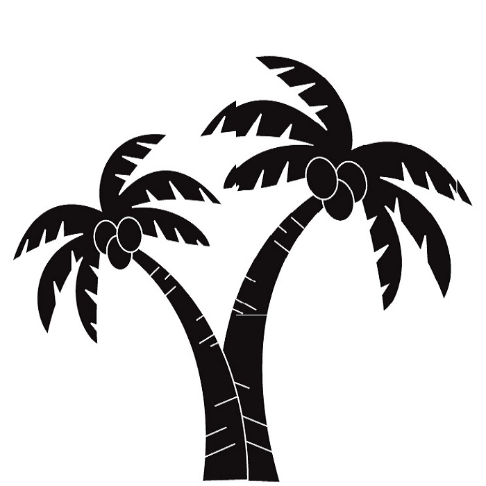 700x700 Fresh Inspiration Clipart Palm Tree Leaf Template Coconut Png Clip