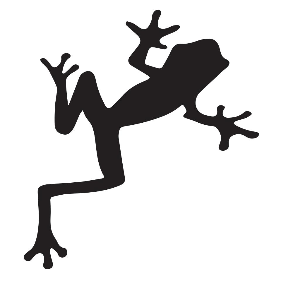 960x960 The Story Of The Frog Klinggruppen