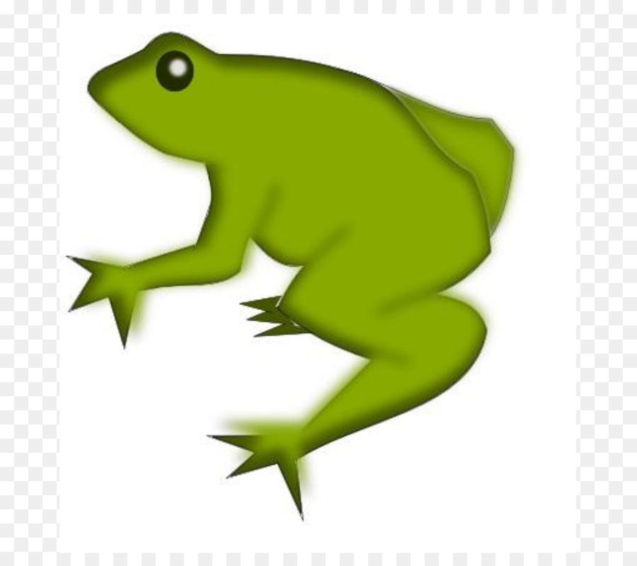 900x800 Frog Clip Art