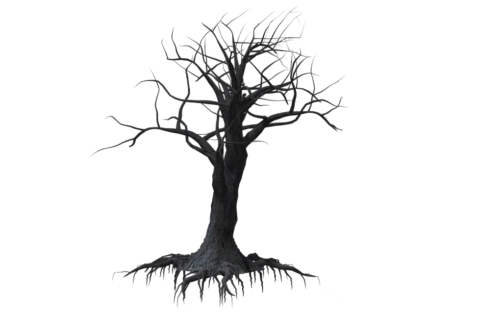 1024x639 Creepy Tree Drawing Creepy Tree 03 By Wolverine041269 Ravens