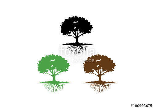 500x354 Oak Tree With Root Silhouette Clip Art Logo Stock Image