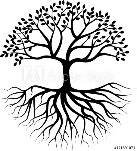 455x500 Tree Silhouette With Root