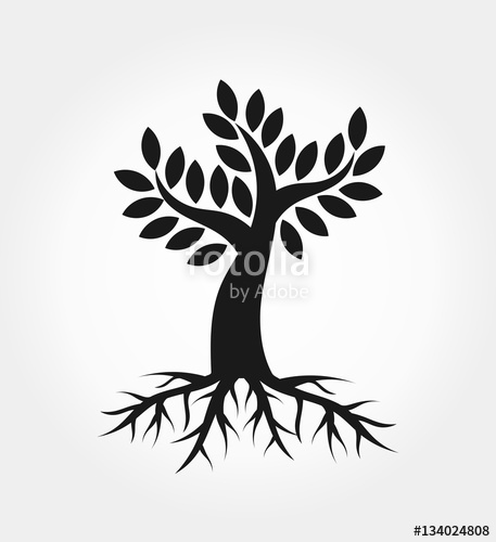 457x500 Tree With Roots Stock Image And Royalty Free Vector Files