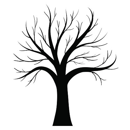 416x416 Vector Tree Silhouette Stock Vectors