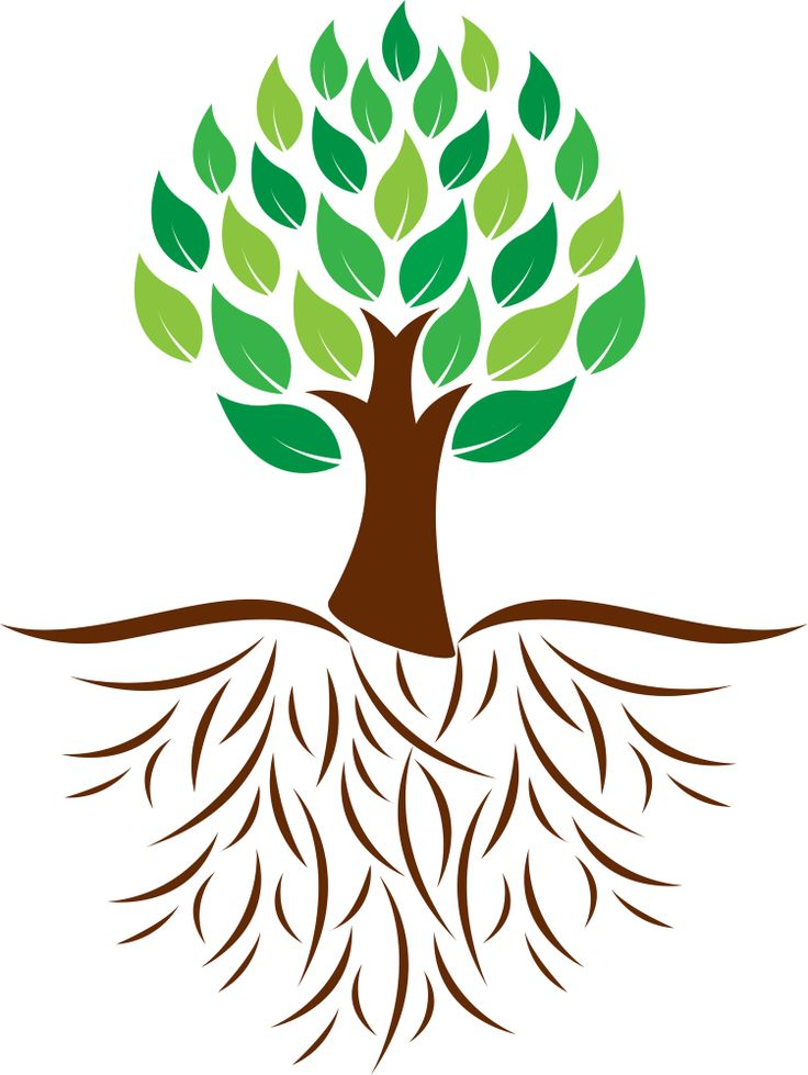 736x979 Free Clipart Tree With Roots