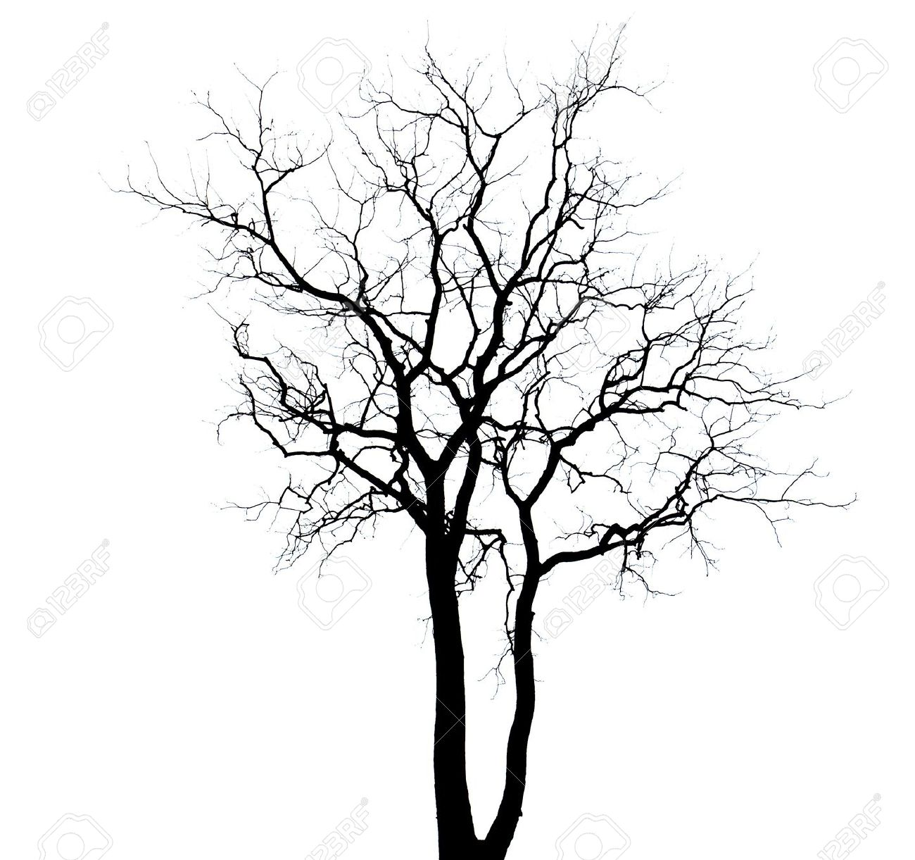 1300x1221 Drawn Dead Tree Silhouette