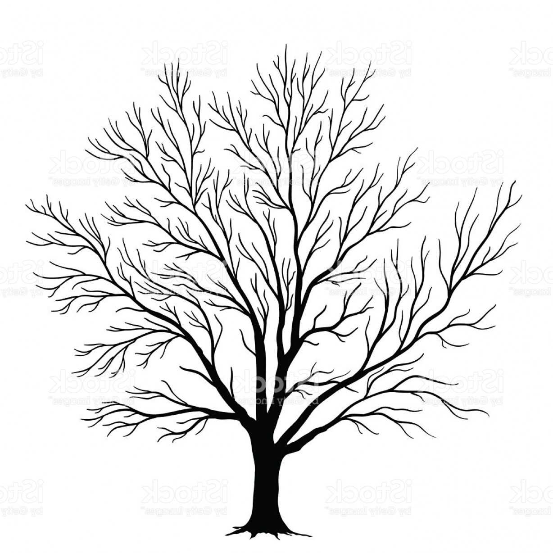 1228x1228 Silhouette Vector Tree Branch Art Shopatcloth