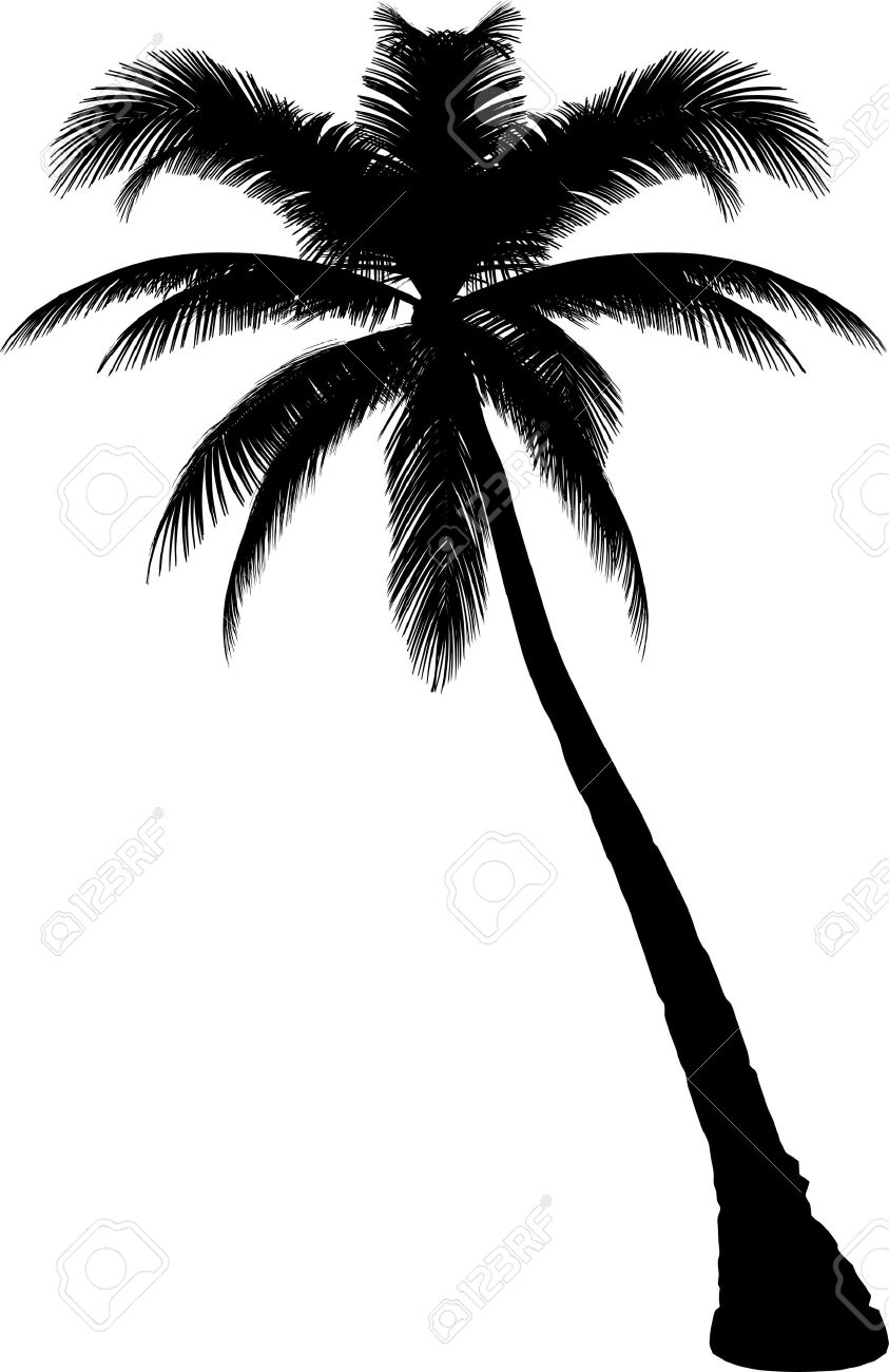 tree silhouette clip art at getdrawings com free for personal use rh getdrawings com clipart palm trees beach clip art palm trees on beach