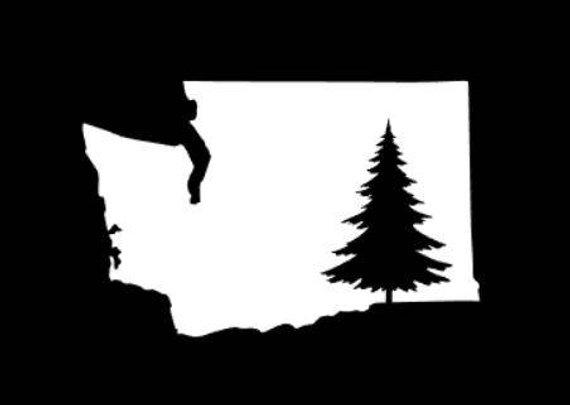 570x405 Washington Tree Decal Washington Decal Washington Sticker