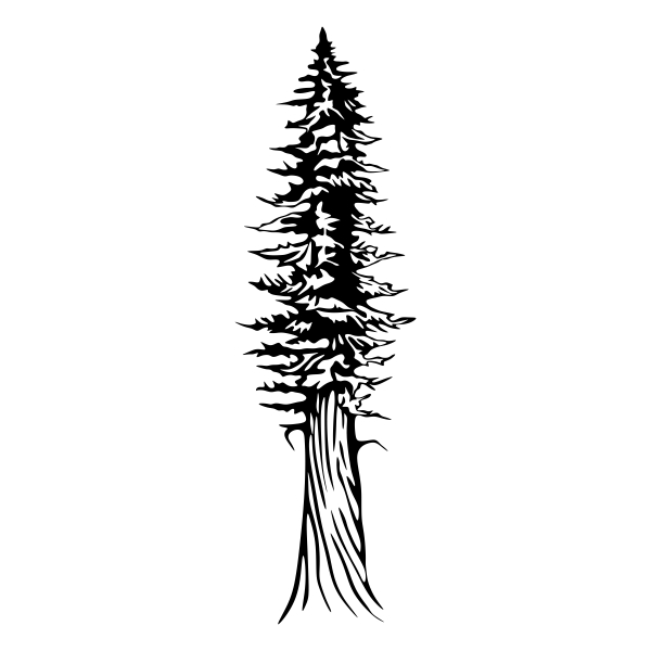 600x600 Old Tree Silhouette Cuttable Design