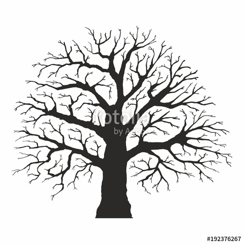500x500 Tree Silhouette On White Background Stock Image And Royalty Free