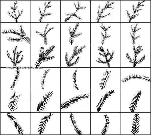 598x537 Pine Brushes Photoshop Photoshop Free Brushes 123Freebrushes