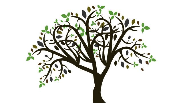 640x359 line art drawings of trees Free vector colorful tree Tree Vector