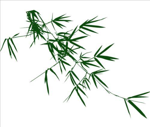 500x424 Bamboo leaves photoshop brushes