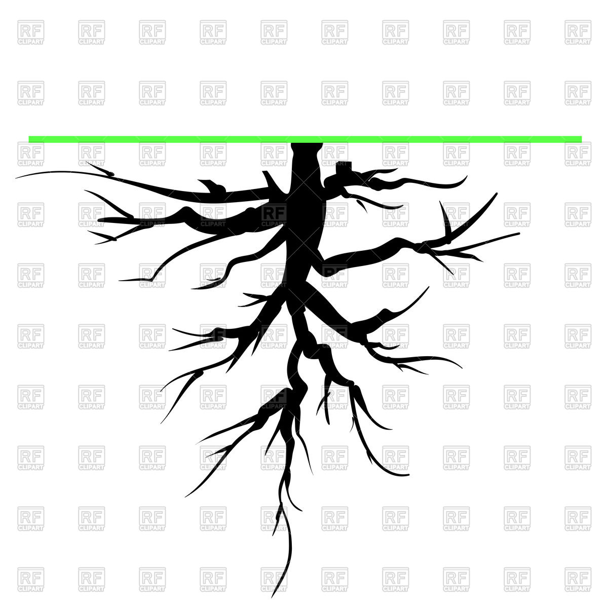 1200x1200 Old Tree Root Royalty Free Vector Clip Art Image