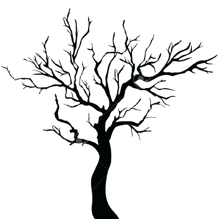 736x736 Tree Silhouette Black Stock Photos Images Pictures Straight Vector