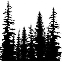 264x264 Motivstempel Cover A Card Pine Trees Drawing